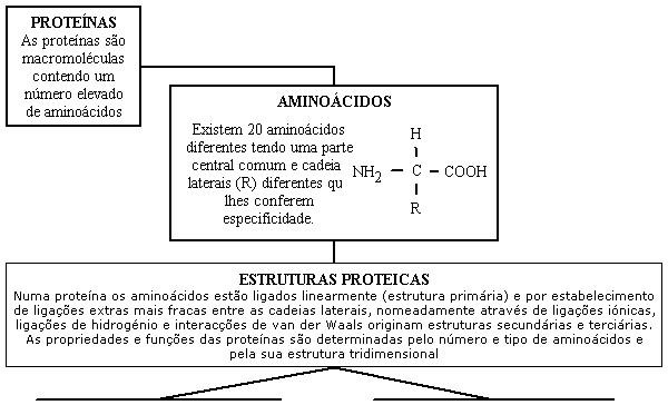 proteinas. Proteínas